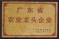 广东省农业龙头企业